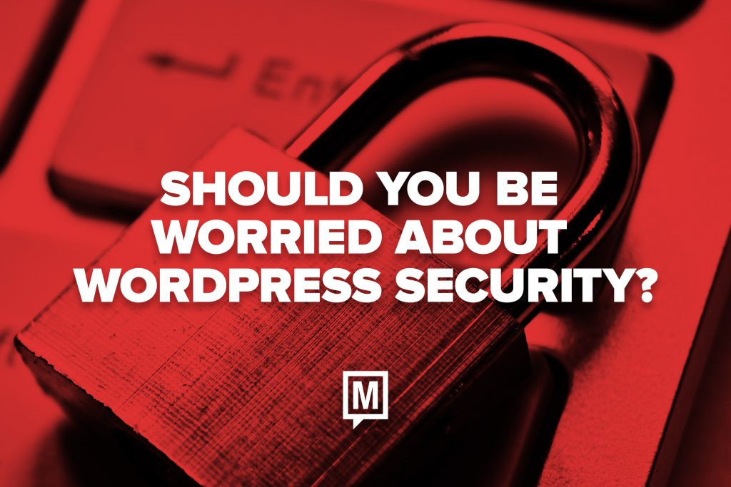 Should You be Worried About WordPress Security